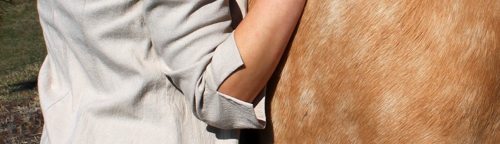 Equestrian Designs